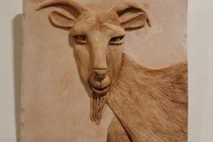 Goat-br-on-br