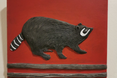 raccoon-on-red
